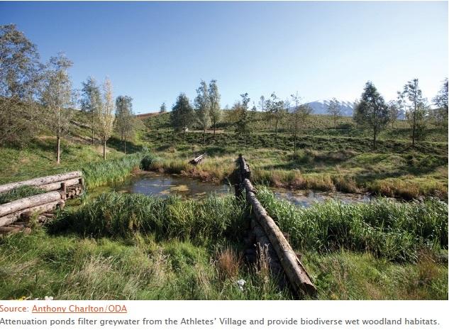 Pond althletes village